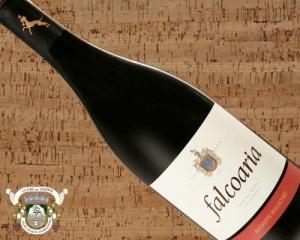 Falcoaria AB 2006