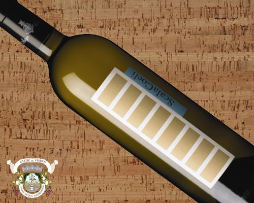 Scala Coeli Branco 2011